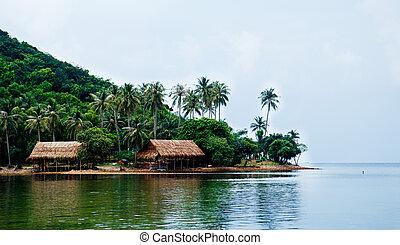 bölcsész, lua, vietnam, giang, kien, sziget