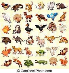 böllér, állhatatos, állat