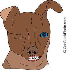 böser , kopf, hintergrund., karikatur, hund, weißes
