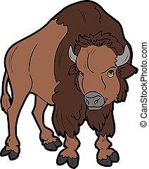 búfalo, bisonte, caricatura, carácter