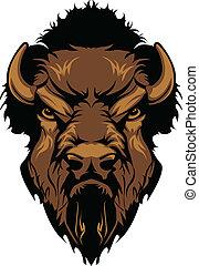 búfalo, bisonte, mascote, cabeça, gráfico