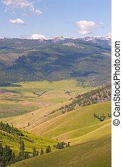 búfalo, gama nacional del bisonte