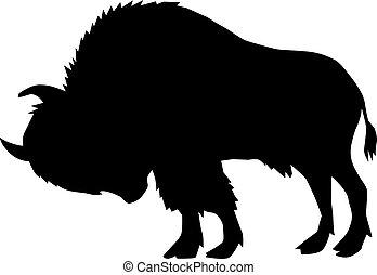 búfalo, vista, lado