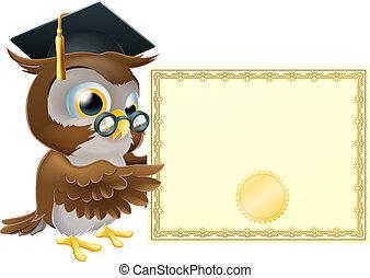 búho, certificado, diploma, plano de fondo