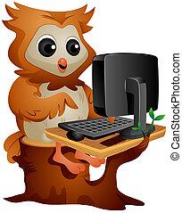 búho, computadora