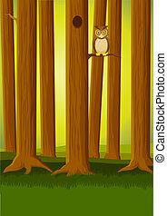 búho, en, el, bosque
