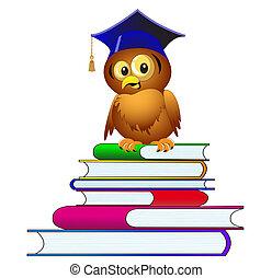 búho, en, sombrero, se sienta, en, pila, de, el, libros