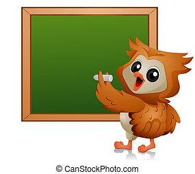 búho, estudiante