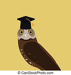 búho, gorra, graduación