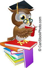 búho, lectura, sabio
