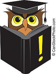 búho, lectura, sabio, libro