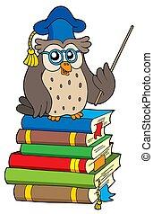 búho, libros, profesor