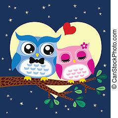 búho, pareja, ilustración