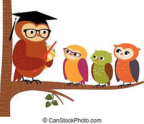 búho, profesor, y, el suyo, estudiantes