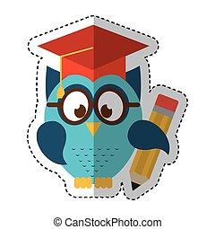 búho, sombrero, graduación