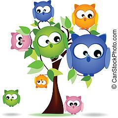 búhos, árbol, colorido, familia