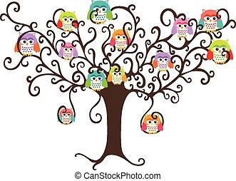 búhos, bastante, colorido, árbol