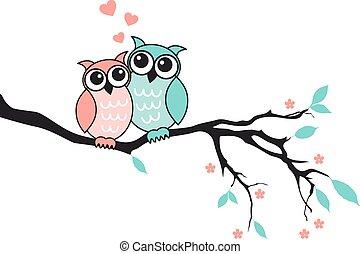 búhos, lindo,  vector, amor