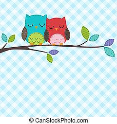 búhos, pareja