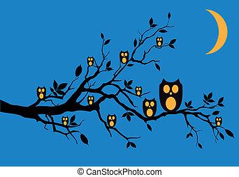 búhos, vector, noche, árbol