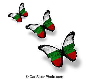 búlgaro, mariposas, tres, aislado, bandera, blanco