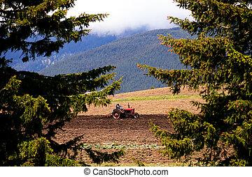 búlgaro, tierras labrantío