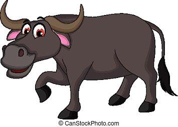 büffel, karikatur, posierend