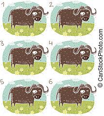büffel, spiel, visuell