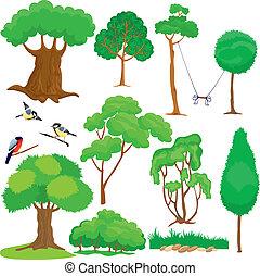 büsche, satz, bäume, vögel