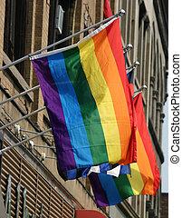 büszkeség, zászlók, buzi