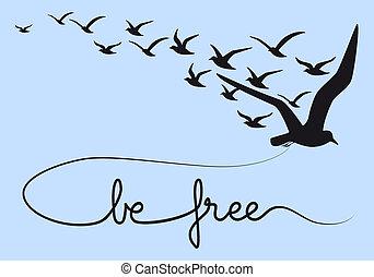 být, svobodný, text, let, ptáci, vektor