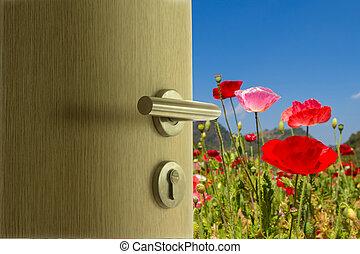 błękitne drzwi, niebo pole, mak, otwarty