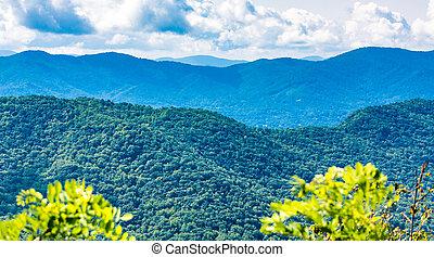 błękitne góry, grzbiet, park, kwestia
