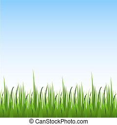 błękitne niebo, seamless, tło., wektor, zielony, poziomy, trawa