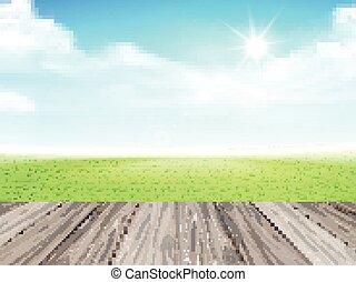 błękitne niebo, trawa, zielone pole