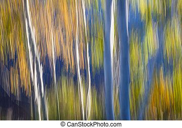 błękitny, brzeg, brzozy, jezioro