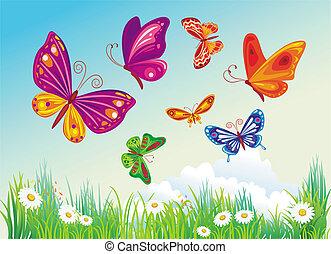 błękitny, butterfly's, tło