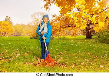 błękitny, chłopiec, grabie, marynarka, czyszczenie, trawa