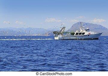 błękitny, dużo, seagulls, ocean, profesjonalny, fisherboat