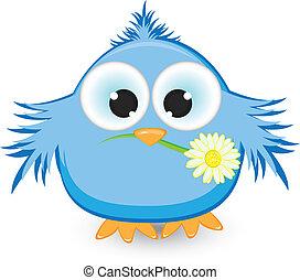 błękitny, dziób, kwiat, jego, wróbel