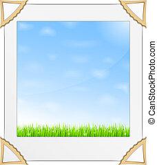 błękitny, fotografia, trawa, niebo, zielony