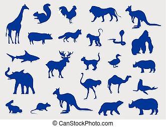 błękitny, komplet, sylwetka, wektor, różny, zwierzęta