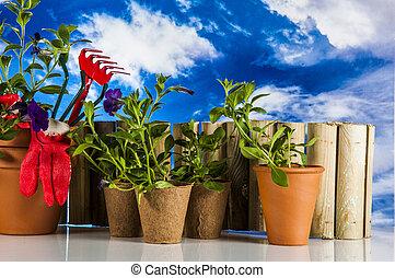 błękitny, materiał, ogród, tło