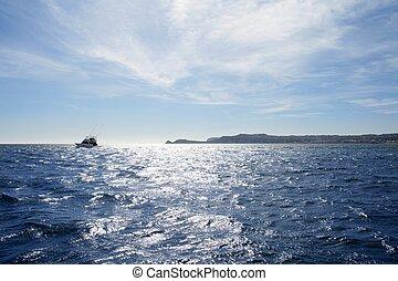 błękitny, morze, daleki, śródziemnomorski, wędkarski,...
