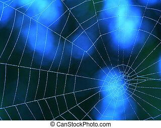 błękitny, sieć, pająk