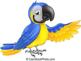 błękitny, sprytny, żółty, papuga