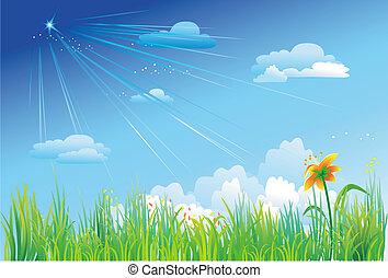 błękitny, trawa, niebo, tło