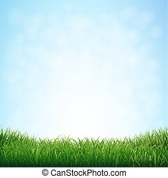 błękitny, trawa, niebo