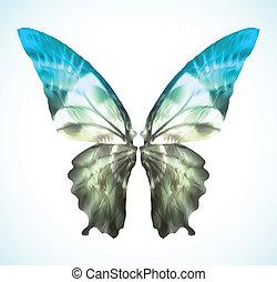 błękitny, wibrujący, wektor, motyl, isolated.