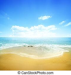 błękitny, złoty, plaża, niebo